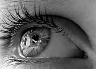 Les yeux ... Urfywkhb